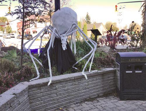 Massive spider