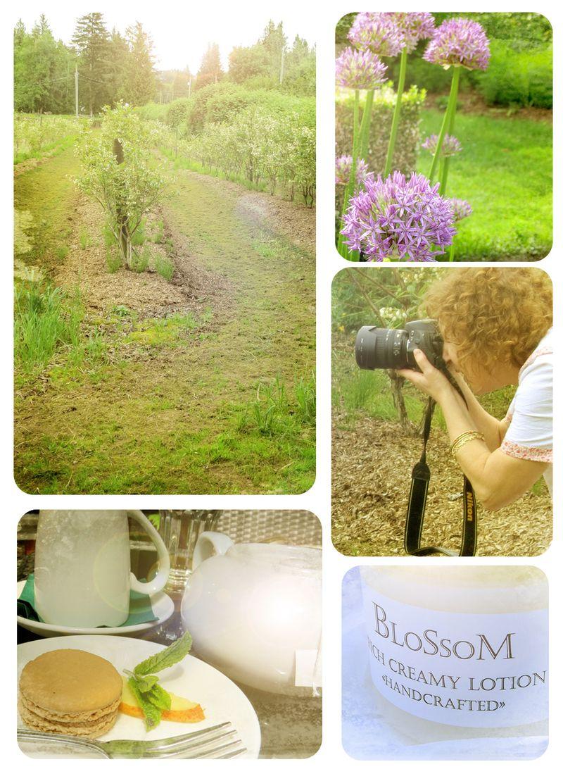 Sue@ a colourful canvas blogger meetup bc suzanne carillo style files