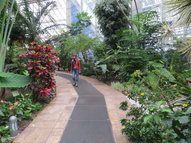 Indoor gardens nice france
