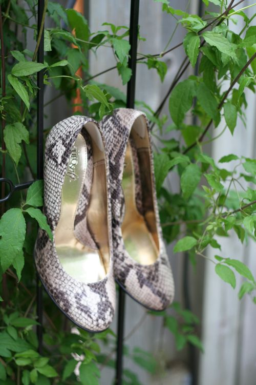 So soft snake skin pumps suzanne carillo style files